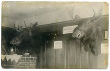 RPPC Minnesota Hill City Hotel Lobby with Mooseheads & Rate Sheet
