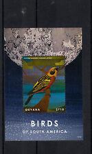 Guyana 2013 MNH Birds of South America 1v S/S Golden Tanager Tangara Arthus
