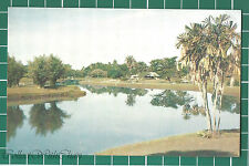 (CWC) Malaya 1950s/1960s Taiping Lake Perak Postcard #3301 Near Mint