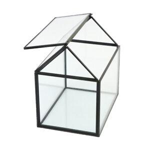 Clear Glass Geometric Terrarium Box Flowers Herb Moss Planter Greenhouse Gifts