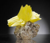Arcanite crystals on matrix from Poland yellow like wulfenite or uranocircite
