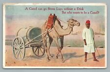 """""""Who Wants to be Camel?"""" Antique Liquor Humor—Middle East—Antique—Climax Springs"""