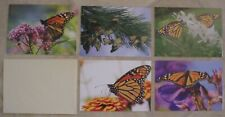 SET OF 5 MONARCH BUTTERFLY BLANK NOTE CARDS, SIERRA CLUB, NEW