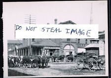 Toronto Postcard (Read Description) 1902 Cattle Parade Front St Lawrence Market