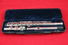 Flute ideal starter cheaper then renting