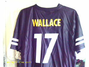 Pittsburgh Steelers Jersey (Mike Wallace #17) Youth XL (18-20) (New With Tags)