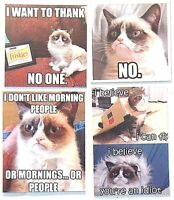 Grumpy Cat Thank no one morning people believe fly idiot pet silly food magnet
