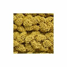 Higgins 5 lb Spray Millet 1 Pack One Size