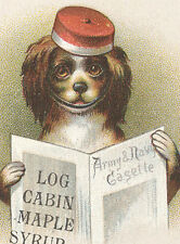 1880s TOWLE'S LOG CABIN MAPLE SYRUP TRADE CARD, DOG READING PAPER *ON SALE* TC19