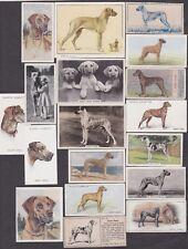 17 Different Vintage GREAT DANE Tobacco/Cigarette Dog Cards