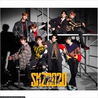 STRAY KIDS SKZ2020 JAPAN 2 CD+DVD+BOOK limited edition Brand New