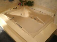 HYDRO SYSTEMS JACUZZI WHIRLPOOL SPA BATH TUB w/ FAUCET SPRAYER Hessco industries