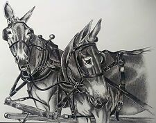 Work  Mule Print by Jack Turbyville