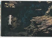 Glow Worm Grotto Waitomo Caves New Zealand Plain Back Card 331a