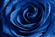 New Hand Cut Wooden Jigsaw Puzzle Blue Rose Diamond In Wooden Box