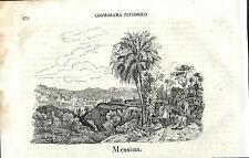 Stampa antica MESSINA panorama Sicilia Cosmorama 1841 Old antique print