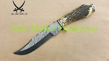 """12"""" DAMASCUS ORIGINAL RED NATURAL STAG HANDLE HANDMADE HUNTING KNIFE"""