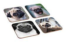 Cute Pugs 4 Piece Wooden Coaster Set