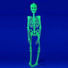 Halloween-Deko Grusel-Kunststoff-Skelett 90cm Helloween leuchtet im Dunkeln grün