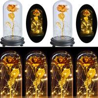 Enchanted Forever Rose Flower In Glass LED Light Wedding Festival Home Decor DIY