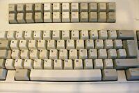 Vintage IBM Model M Keyboard Part No 1395660 Buckling Spring Clicky Terminal