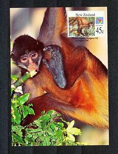 JJBB 068 NEW ZEALAND 1994 MAXI CARD FDC  MONKEYS SPIDER