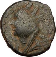 ELAGABALUS  Bisexual Emperor Edessa Ancient Roman Coin TYCHE LUCK  i23011