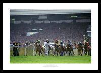 Desert Orchid Last Race 1991 Horse Racing Photo Memorabilia (043)