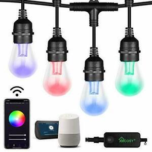 Patio Lights RGBW Color & White LED Lights Outdoor Smart LED String Lights