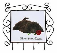Poodle+Rose 'Love You Mum' Wrought Iron Key Holder Hooks Christma, AD-POD9RlymKH