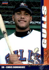 2006 Newport Gulls Choice #6 Chris Dominguez Miami Florida FL Baseball Card