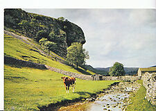 Yorkshire Postcard - Kilnsey Crag - Wharfedale    LE299