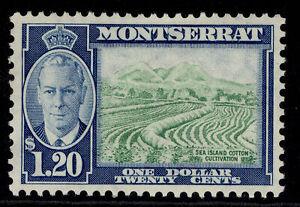 MONTSERRAT GVI SG133, $1.20 yellow-green & blue, M MINT.