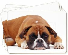 Red and White Boxer Dog Picture Placemats in Gift Box, AD-B26P