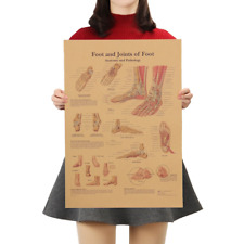 ​Foot Joints Foot Anatomy Pathology Poster Educational School Retro Kraft Paper
