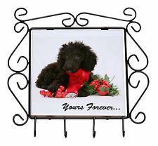 Miniature Poodle Dog 'Yours Forever' Wrought Iron Key Holder Hooks C, AD-POD3yKH