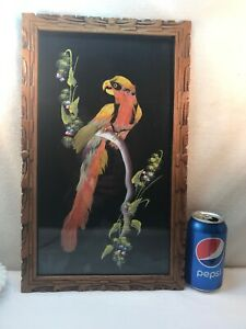 Vtg LARGE Parrot Bird Genuine Feather Painting Art Original Watercolor Framed