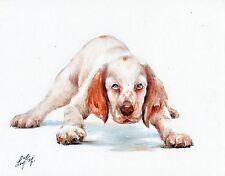 Original Oil Art Clumber Spaniel Portrait Painting Dog Artist Signed Artwork