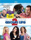 Grown Ups 2 (Blu-ray, 2013)