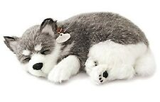 Perfect Petzzz Alaskan Husky Plush Puppy Breathing Huggable Animal Dog Real Pet