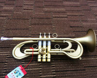 Professional Matte Customized Trumpet flumpet horn B-Flat Monel Valves New Case
