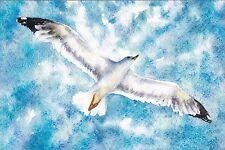RARE Hover Seagull bird in the sky by Schemerova Russian modern postcard