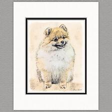Pomeranian Orange Pom Dog Original Art Print 8x10 Matted to 11x14