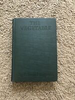The Vegetable By F. Scott Fitzgerald 1st Edition 1923 Hardcover *FREE SHIPPING*