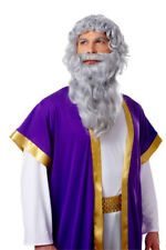 Deluxe Biblical Long Gray Moses Wig & Beard
