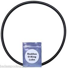 Pentair 357255 SuperFLo Lid O-Ring with Lube