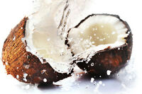 Fractionated Coconut Oil (MCT Oil) - FREE SHIPPING 1 oz. - 16 oz.