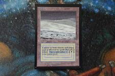 MTG - International Collectors' Edition Tundra - (Alpha Beta Art) NM