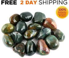 1/2LB BLOODSTONE Tumbled LOT Polished CRYSTAL Natural Stone Gemstone Yoga LARGE