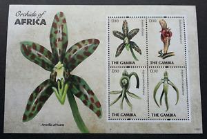 [SJ] Gambia Orchids Of Africa 2011 Flower Plant Flora (miniature sheet) MNH